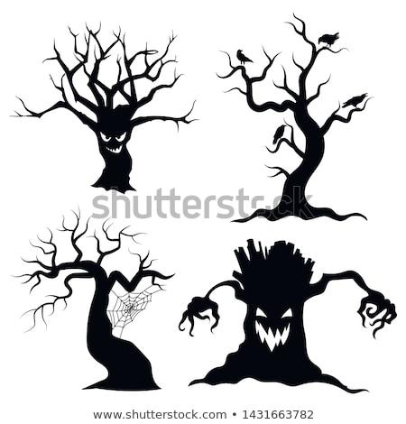 haunted tree stock photo © vectomart