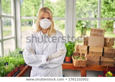 Szőke nő női biológus pózol labor üveg Stock fotó © photography33