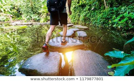 Foto d'archivio: Stepping Stones Across A Stream