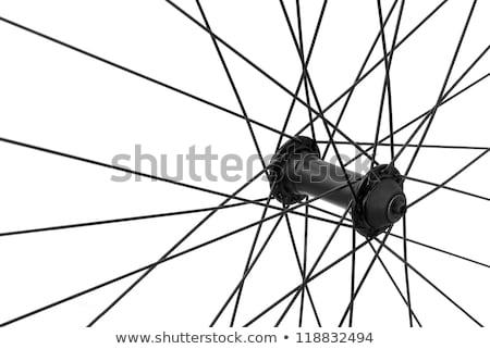 Fiets spaak detail wiel geïsoleerd Stockfoto © FOKA