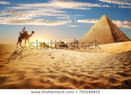 bedouins and the pyramids stock photo © dayzeren