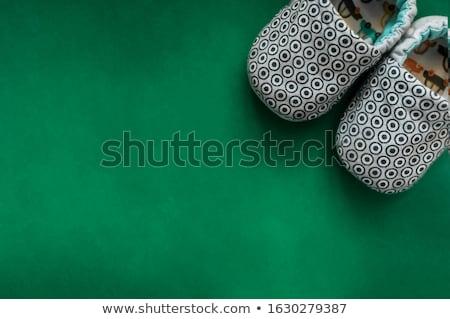 Paar groene slippers witte huis ontwerp Stockfoto © homydesign