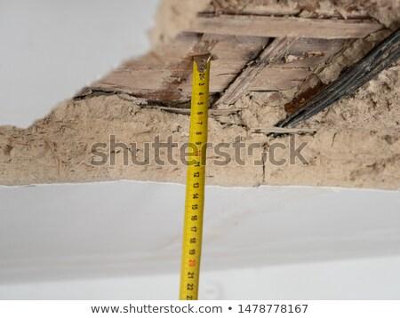 fal · plafon · elhagyatott · ház · penész · festék - stock fotó © bertl123