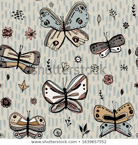 Butterfly Grunge texture Stock photo © Lightsource