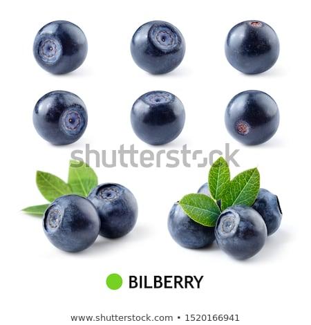 Bilberry  Stock photo © grechka333