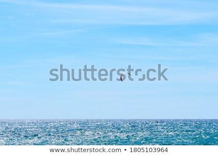 Papírsárkány szörfös ki óceán napos idő tengerpart Stock fotó © Frankljr