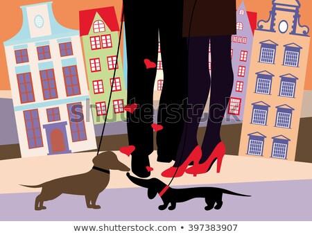kadın · bacaklar · köpek · rus · terriyer · göz - stok fotoğraf © filipw
