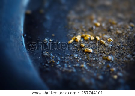 Gold Pan by the River Stock photo © leetorrens