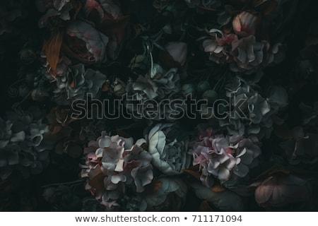 哥特式 黑色 鐵 板 質地 盤 商業照片 © tony4urban
