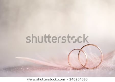 two golden wedding rings and feather   soft white stock photo © taiga
