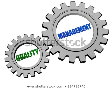 Quality Management In Silver Grey Gears Stockfoto © marinini