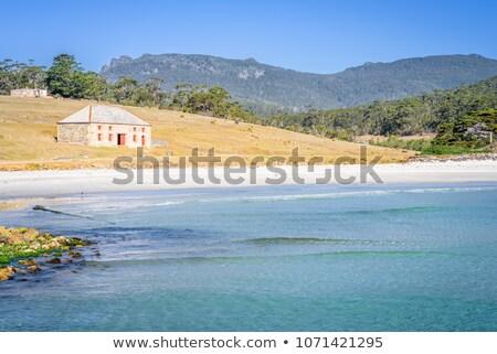 島 タスマニア州 海岸 海 ビーチ ストックフォト © roboriginal