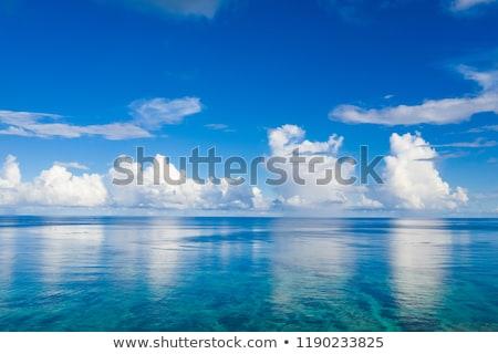 морем · высота · Черногория · воды · природы · лет - Сток-фото © avq