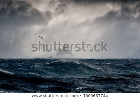 Dramatic sea with island Stock photo © vapi