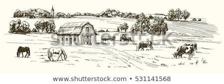 çiftlik · ahır · kroki · ikon · vektör - stok fotoğraf © netkov1