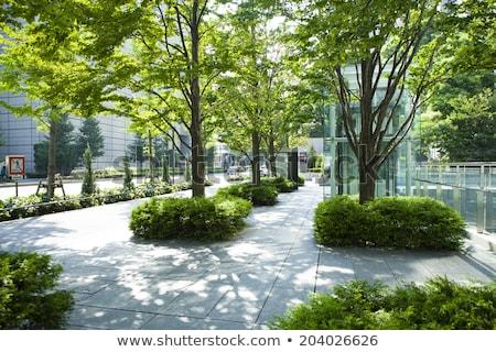 Green shades, City life Stock photo © Vividrange