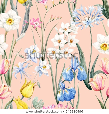Floral iris pattern Stock photo © netkov1