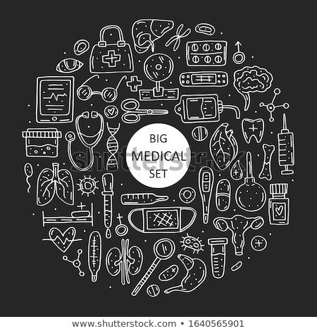 腎臓 チョーク アイコン 手描き ベクトル ストックフォト © RAStudio