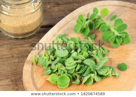 Indian pays alimentaire santé vert médecine Photo stock © vinodpillai