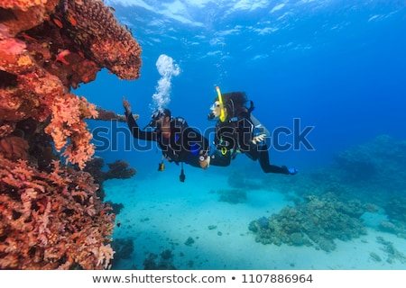 Two divers scuba diving in tropical sea at reef Stock photo © Kzenon