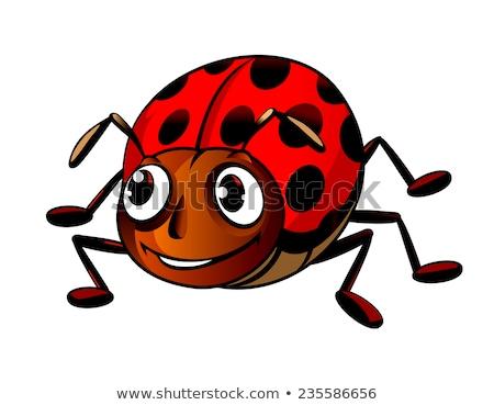 Bonitinho vermelho besouro desenho animado diversão pintura Foto stock © jawa123