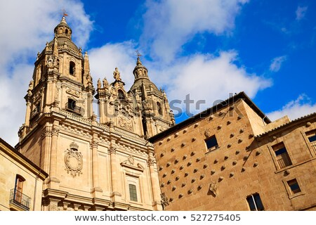 Salamanca Clerecia church Spain Stock photo © lunamarina