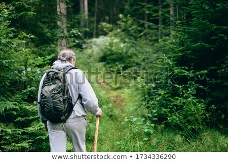 Happy hiker man walking through the valley. Adventure concept Stock photo © deandrobot