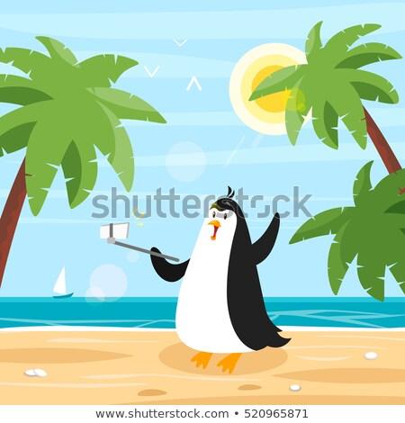 vector flat style illustration of penguin selfie on the beach stock photo © curiosity