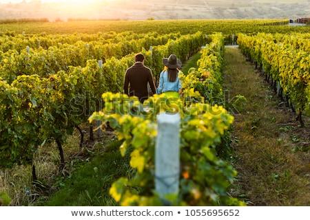 gazdálkodás · pár · mosoly · boldog · farm · portré - stock fotó © is2