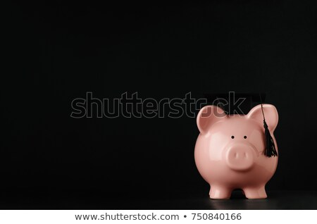 Pink Piggy Bank wearing Mortarboard on Black Chalkboard Backgrou Stock photo © frannyanne