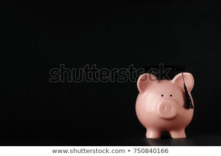 spaarvarken · zwarte · afstuderen · hoed · geïsoleerd · witte - stockfoto © frannyanne