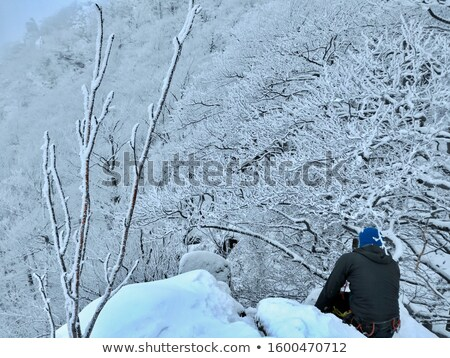 climber belaying on snow covered peak Stock photo © IS2