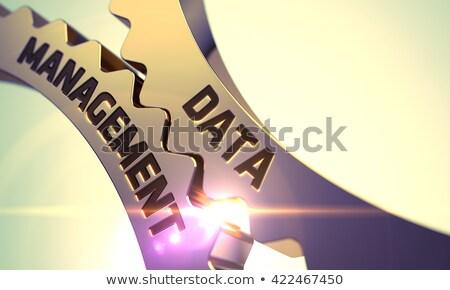 Data Management on the Golden Cogwheels. Stock photo © tashatuvango