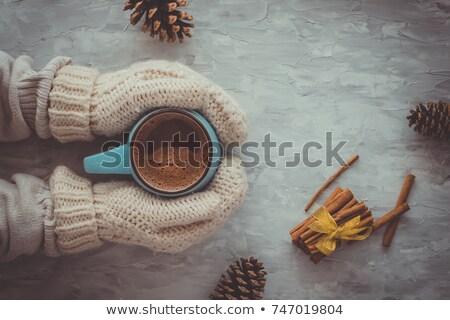 Tél forró csokoládé karácsony új év bögre fehér Stock fotó © YuliyaGontar