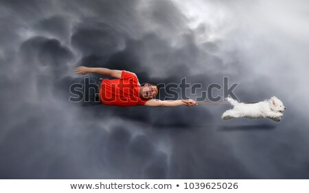 Canine education, dragged through the clouds Stock photo © tilo