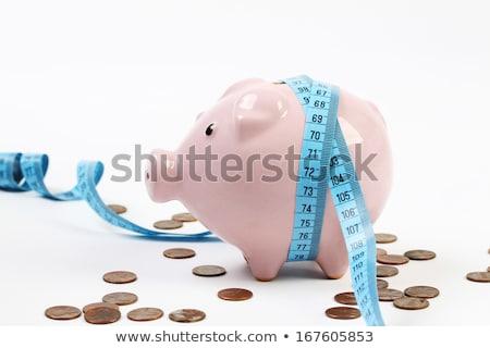 fita · métrica · piggy · bank · porco · gordura · gráfico · fita - foto stock © is2