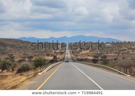 Stoffig weg Tanzania afrika stof Stockfoto © IS2