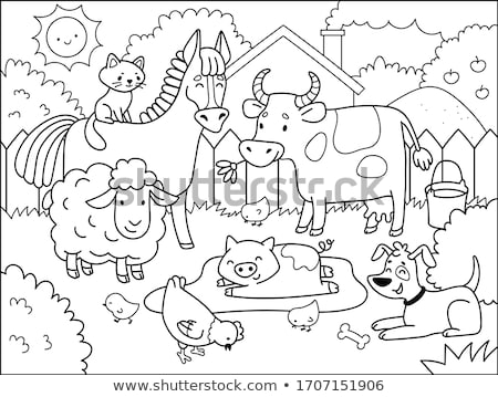 Pig coloring book. Vector illustration of farm animals Stock photo © popaukropa
