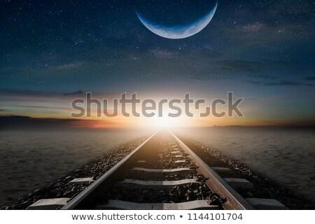 Train in night desert scene Stock photo © bluering