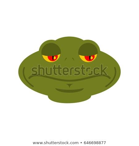Frog sad emoji. toad Avatar sorrowful amphibious. Emotion Reptil Stock photo © popaukropa