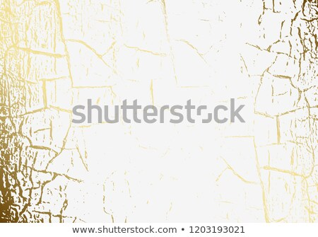 Vector marble texture cracked golden foil. Patina. Gold scratch. Subtle light white holiday Stock photo © Iaroslava