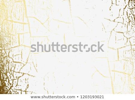 Vettore marmo texture screpolato oro Foto d'archivio © Iaroslava