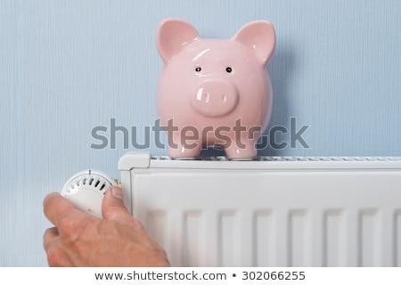 spaarvarken · verwarming · radiator · temperatuur · huis · muur - stockfoto © andreypopov