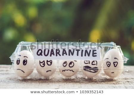 Eggs in a box, quarantine. Eggs are considered when passing quarantine at the border Stock photo © galitskaya