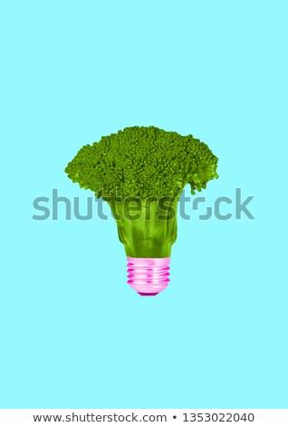 vegan · színes · szó · művészet · írott · fehér - stock fotó © nito