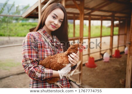 Scene with farmer and chickens Stock photo © colematt