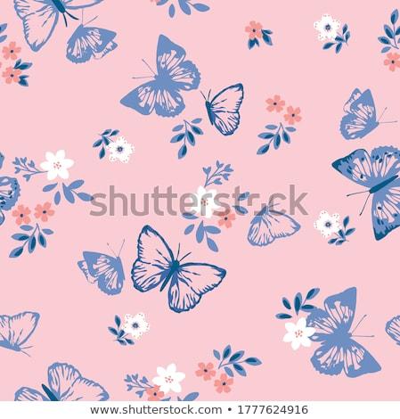 papír · virágok · pillangó · izzó · csillagok · légy - stock fotó © colematt