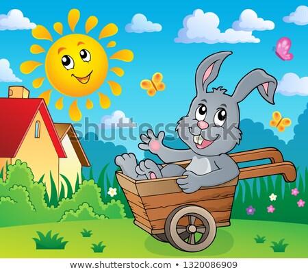 Coelhinho da páscoa carrinho de mão imagem rabino animal roda Foto stock © clairev