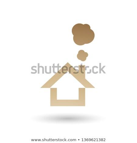 Bege casa fumar ícone vetor ilustração Foto stock © cidepix