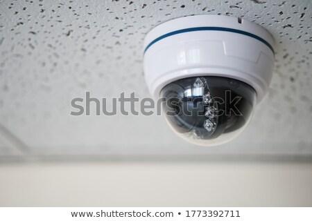 güvenlik · kamera · ofis · binası · beyaz · tavan · ofis · sanayi - stok fotoğraf © giulio_fornasar